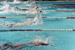A heat of freestyle swimmers racing at a swim meet. A heat of male freestyle swimmers racing at an outdoor swim meet Stock Photos