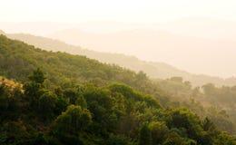 Heat haze. Landscape, Massif du Tanneron, Provence, France Stock Photos