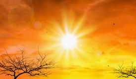 Heat wave of extreme sun and sky background. Hot weather with global warming concept. Temperature of Summer season