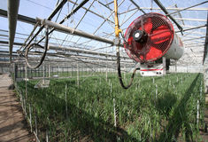 Heater in a Greenhouse Stock Photos