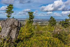 Heath land and conifers on the Dublin Mountains, overlooking Dublin, Ireland. A view of heath land and conifers on the Dublin Mountains, overlooking Dublin Stock Photo