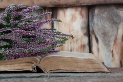 Heather on the background of old book. Horizontal Stock Photo