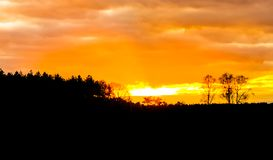 Heather and forest landscape dark silhouette at sunset, vibrant orange sky and clouds because of sundown royalty free stock image