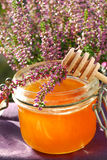 Heather honey Royalty Free Stock Photography