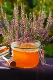 Heather honey Royalty Free Stock Image