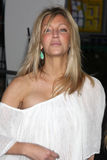 Heather Locklear Stock Afbeeldingen