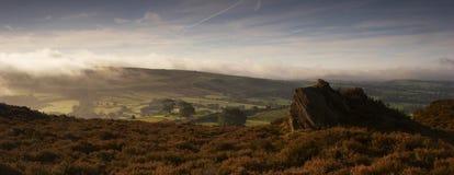 heather mgła. Zdjęcie Royalty Free