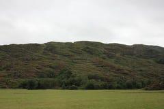 Heather, montagne, Irlanda fotografie stock libere da diritti