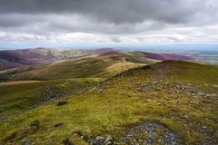 Heather on the Northern Fells. Across Atkinson Pike to Purple Carrock Fell Stock Photography