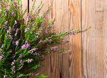 Heather. On a old wooden table Royalty Free Stock Photography
