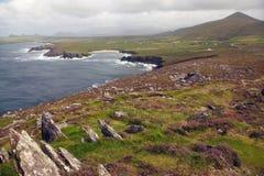 Heather rocks on the irish coast. In Dunquin on Dingle peninsula in Ireland Stock Image