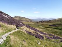 Through heather towards Sheffield Pke, Lake District Royalty Free Stock Photography