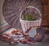 Heather on the white basket next to a candle. Toning Stock Photography
