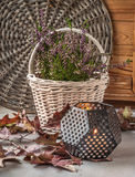 Heather in white basket next to a candle Stock Photos