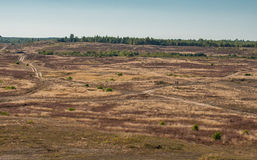 Heathland Royalty Free Stock Images