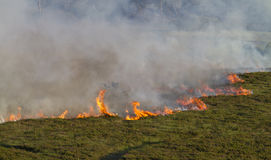 Heathland Fire. Severe heathland fire in Dorset, UK Royalty Free Stock Image