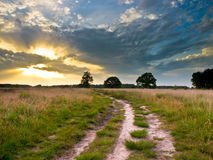 Heathland Trail Sunset. Spectacular Sunset over Trail in Natural Heathland in The Netherlands Royalty Free Stock Image