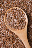 Heathy flax seeds Stock Photography