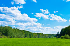 Heaven and earth. Beautiful landscape of green fields and the sky Stock Photography