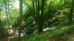 Plitvice Lakes Croatia Royalty Free Stock Images