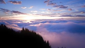 Sunset view above cloud with trees stock images