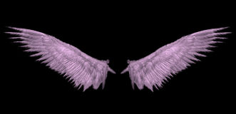 Heaven Pink wing Royalty Free Stock Images
