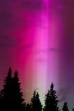 Heaven's Spotlight 2. Green aurora sends a strobe light into the night sky Royalty Free Stock Image