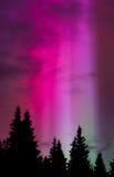Heaven's Spotlight 1. Green aurora sends strobe lights into a purple night sky Royalty Free Stock Photography
