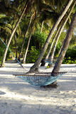 Heavenly beach with hammock Royalty Free Stock Images