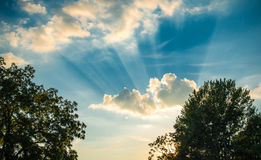 Heavenly Cloudscapes Royalty Free Stock Image