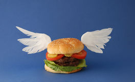 Heavenly Hamburger. Hamburger with Wings on a blue background Stock Images