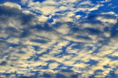 Heavenly landscape with white cumulus clouds Royalty Free Stock Images