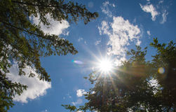Heavenly Sun Burst Stock Photos