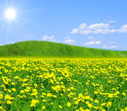Heavenly view: clover meadow and a hill Royalty Free Stock Photo