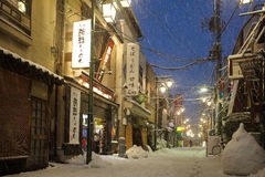 The heaviest snow in decades in Tokyo Royalty Free Stock Photos