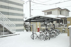 The heaviest snow in decades in Tokyo and other areas of Japan Royalty Free Stock Photography