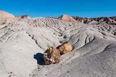 Heavily eroded arid desert landscape and petrified wood rocks in Petrified Forest National Park, Arizona stock photo
