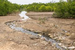Heavily polluted water stream filled with rubbish running throug Royalty Free Stock Images