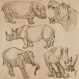 Heavy animals - vector pack, hand drawings Royalty Free Stock Photos