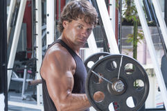 Heavy arm curls Stock Photos