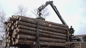 Heavy arm loader unloads wood logs from heavy truck at sawmill production. Cold cloudy winter day stock video