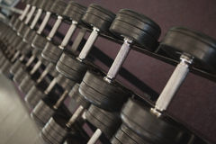 Heavy black dumbbells on rack in weights room Stock Photography
