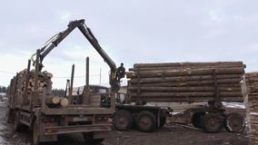 Heavy claw loader unloads timber logs from heavy truck at sawmill facility. Cold cloudy winter day stock video footage