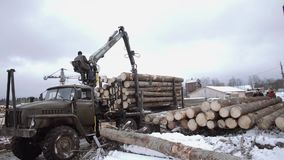 Heavy claw loader unloads wood logs from heavy truck at sawmill facility. Cold cloudy winter day stock video