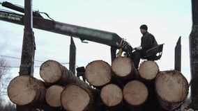 Heavy claw loader unloads wood logs from heavy truck at sawmill factory. Cold cloudy winter day stock footage