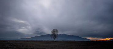 Heavy cloud formation. Ominous cloud formation with a lonely tree on the foreground stock images