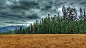 Heavy Clouded Sky And Brown Field In The Forest. Heavy, ominous storm clouds over the mountains and trees with a brown, dry meadow in Okanogan county, Washington stock images