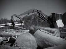 Black and white wood loader grabbing timber piles royalty free stock photos