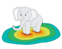 Heavy elephant Stock Photography