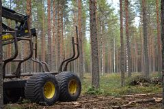 Heavy equipment in logging and forestry: Forwarder stock photo